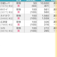 【株】日経レバレッジ型ETFに初挑戦記念日