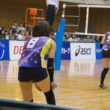 woman-volley-ball-02869