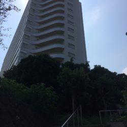 海岸に奇跡が起きる。それはとてもマキバオー。 (大阪→三浦半島1人旅)その5/12