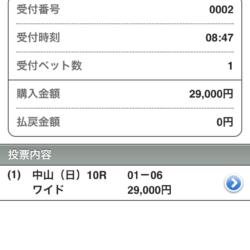 【有馬記念2016】年末最後の投資、3万円の結果は・・・?キタサン?ミッキー?賭け方はいつもの・・・
